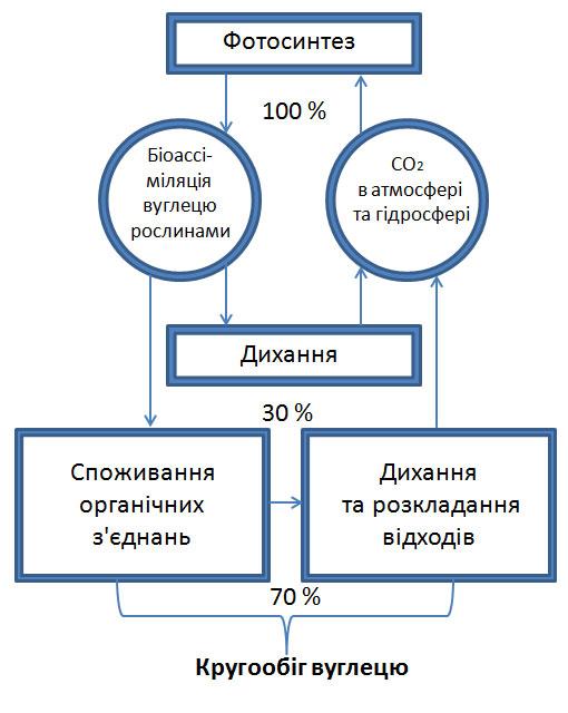 krugoobyg_vuglecyu